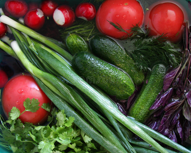 Wet vegetables and greens in a sink royalty free stock photos