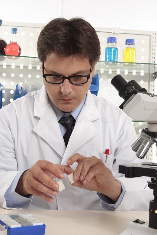 Wetenschapper aan het werk in een laboratorium stock fotografie