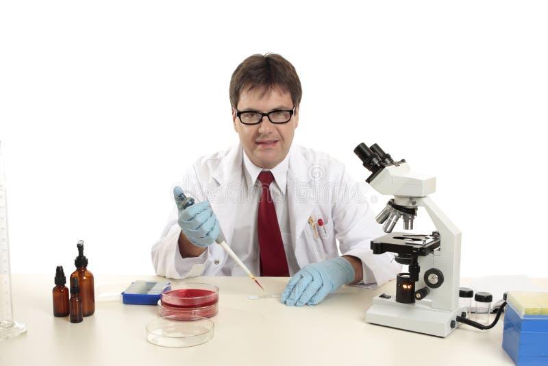 Wetenschapper, bioloog die op het werk dia's voorbereidt royalty-vrije stock afbeeldingen