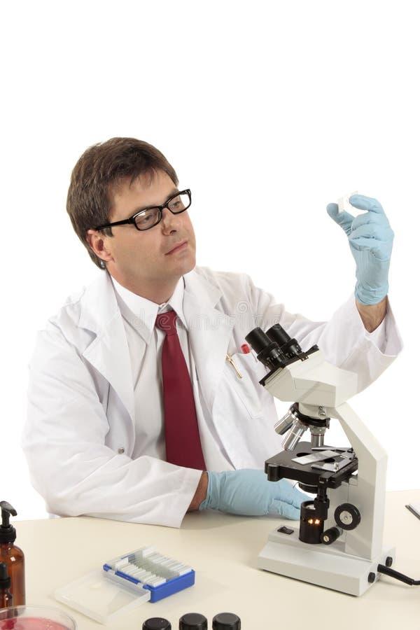 Wetenschapper die een dia inspecteert royalty-vrije stock foto's