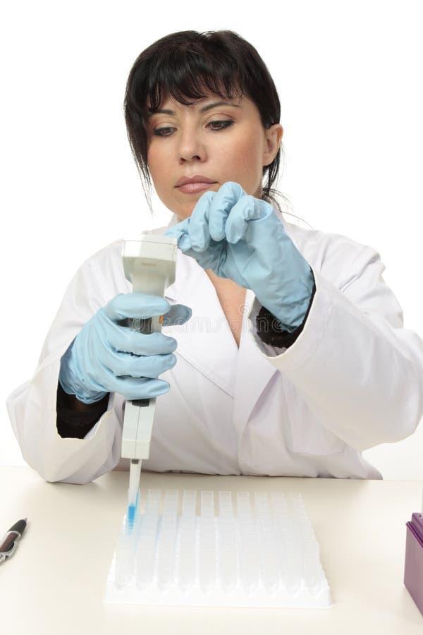 Wetenschapper die met pipet werkt stock afbeeldingen