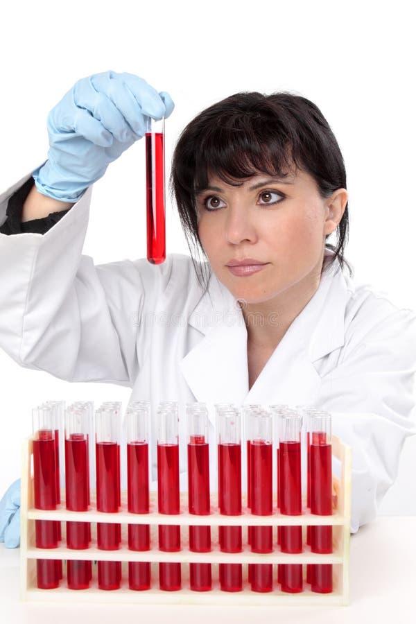 Wetenschapper met reageerbuizen stock fotografie