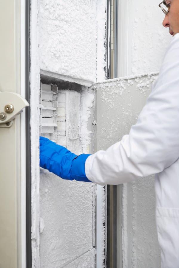 Wetenschapper Reaching Into Freezer in Laboratorium royalty-vrije stock afbeeldingen