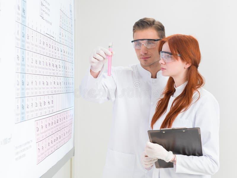 Wetenschappers die een test-buis analyseren stock fotografie