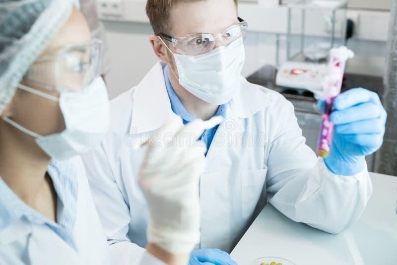 Wetenschappers die in Laboratorium werken stock fotografie