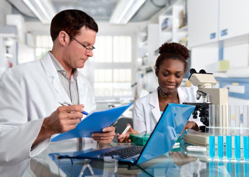 Wetenschappers, Kaukasisch mannelijk en Afrikaans wijfje, het werk in laborator stock afbeeldingen