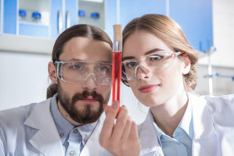 Wetenschappers met chemische steekproef stock afbeeldingen