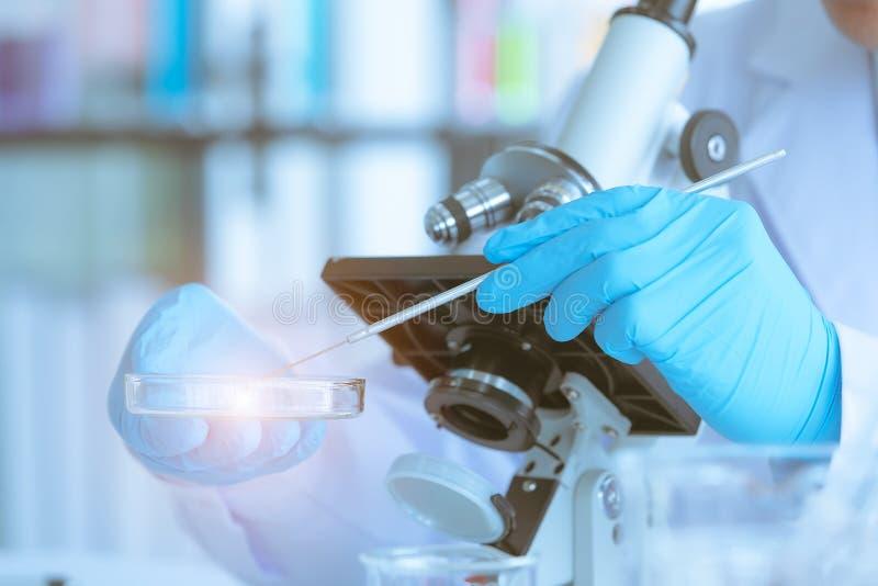 Wetenschappers verzamelde specimens voor zijn experiment stock foto