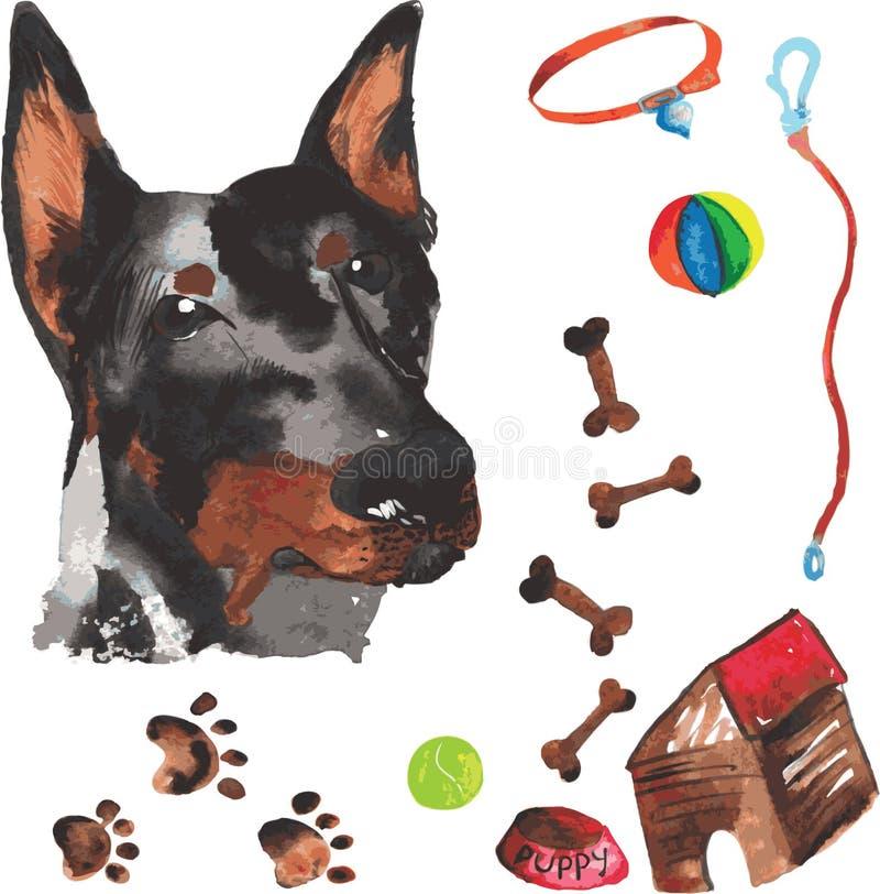 Weterynaryjny zestaw zawierający doberman i akcesoriów dla psów, wat royalty ilustracja