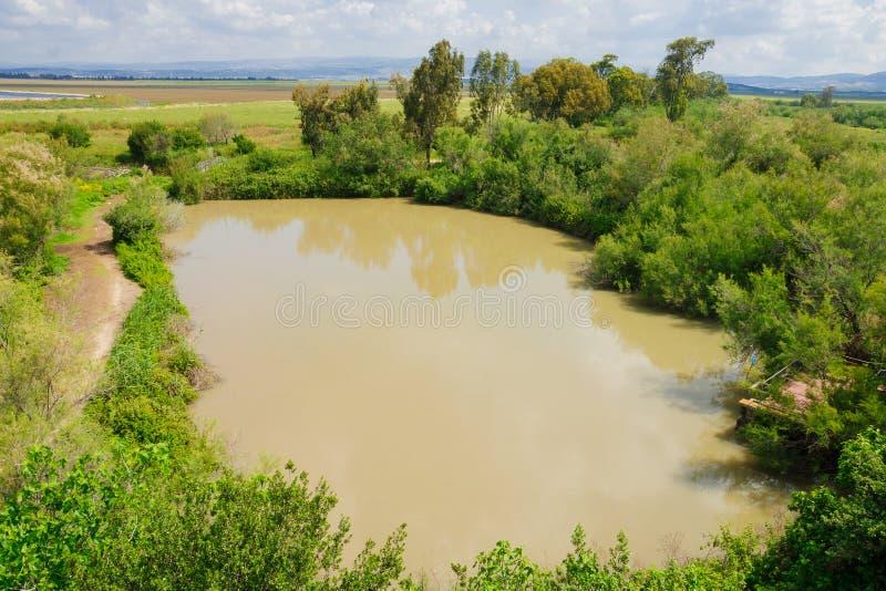 Wetland, En Afek. Wetland landscape, in En Afek Nature Reserve, northern Israel royalty free stock image
