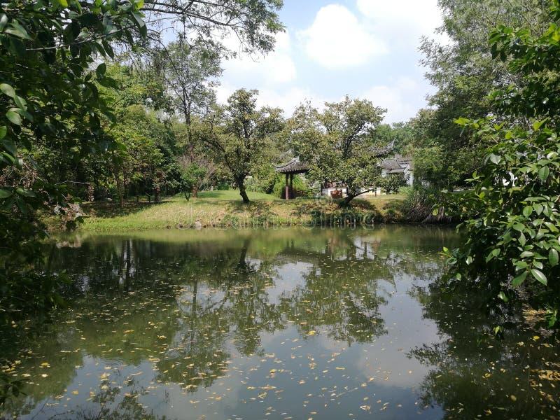 Wetland landscape in Hangzhou stock photos