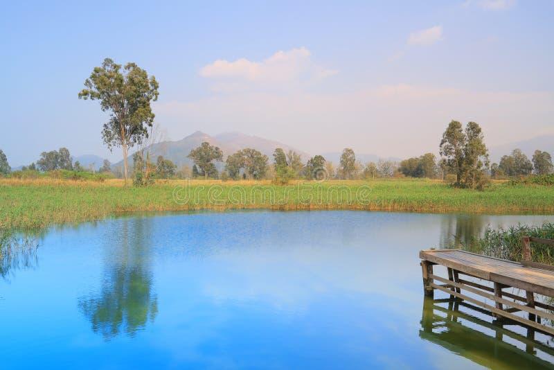 Wetland of NAM SANG WAI stock images