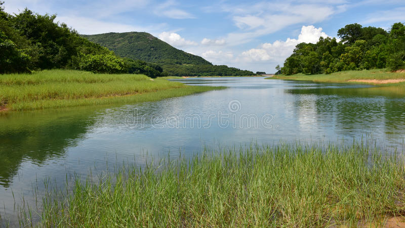 Wetland. The wetland in OCT East of Shenzhen, China royalty free stock images