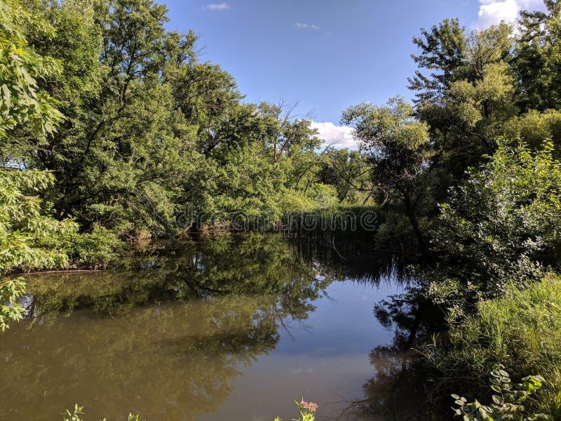 Wetland Pond in Sioux Falls Saratoma City Park. Wetland pond near the Big Sioux River in Sioux Falls, South Dakota stock image