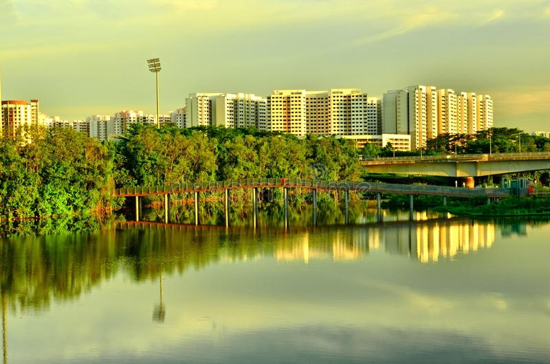 Download Wetland In Urban City Singapore Stock Images - Image: 32048924