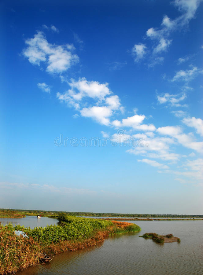 Wetlands and blue sky stock image