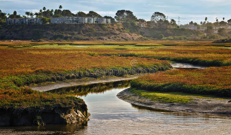 Wetlands, Cardiff, California Stock Images