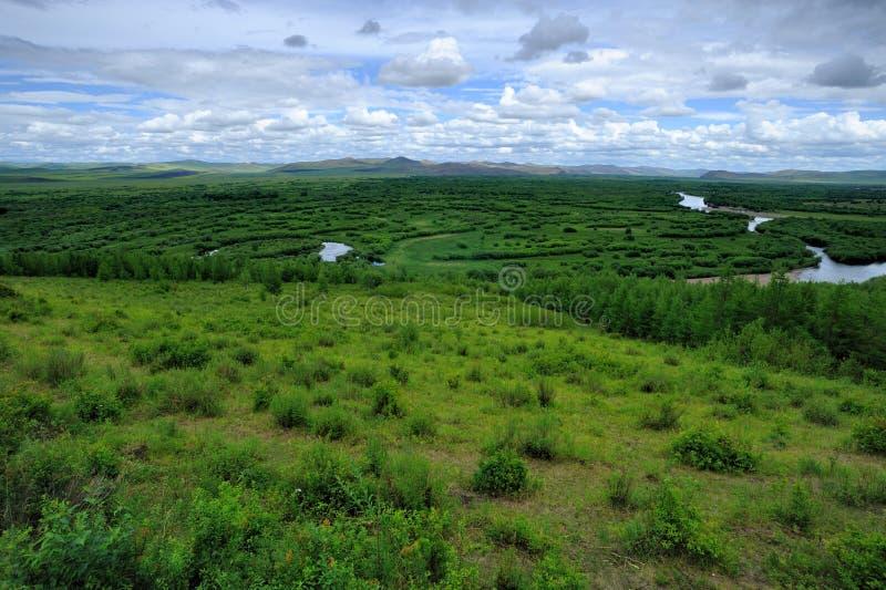 Wetlands in Inner Mongolia stock photography