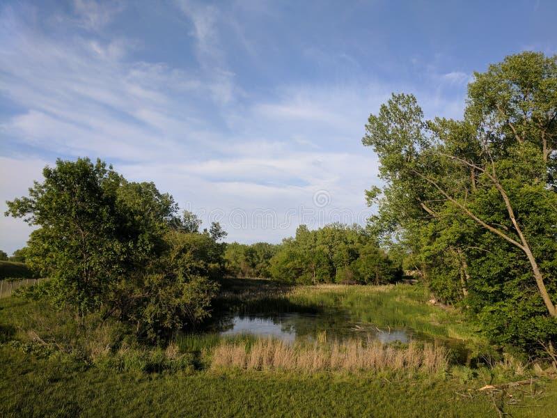 Wetlands. South Dakota wetlands at the town park walk/bike trail path stock photography
