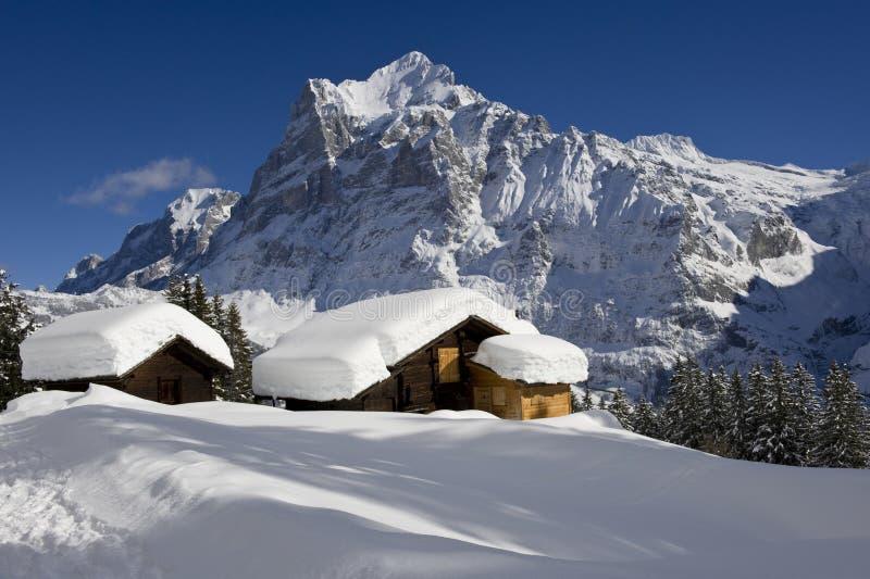 Wetterhorn w zimie obrazy royalty free