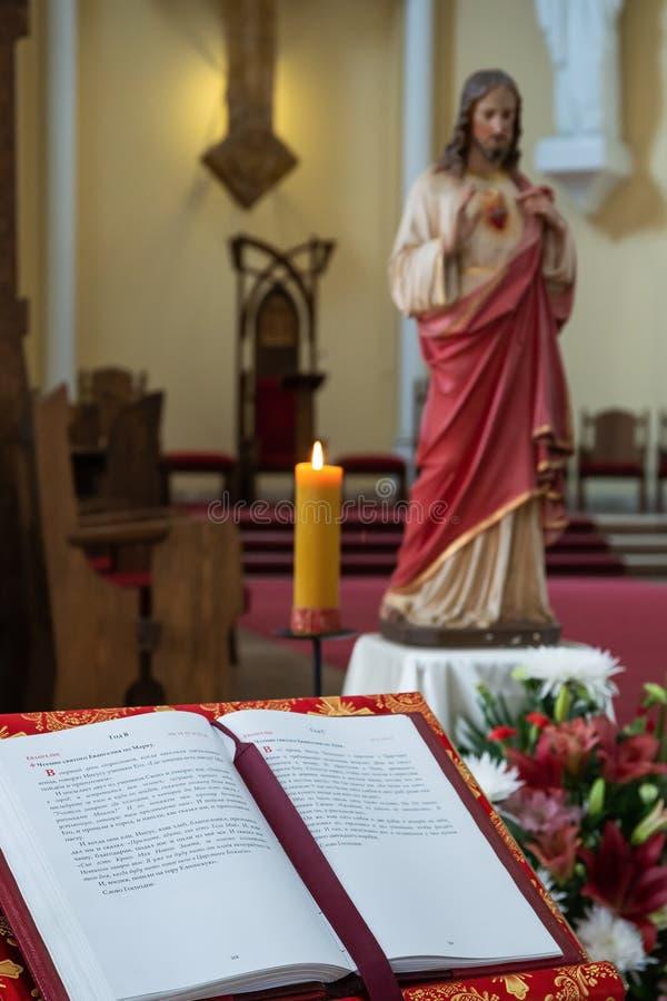 Wewnętrzna Rzymskokatolicka katedra Niepokalany poczęcie o zdjęcie royalty free
