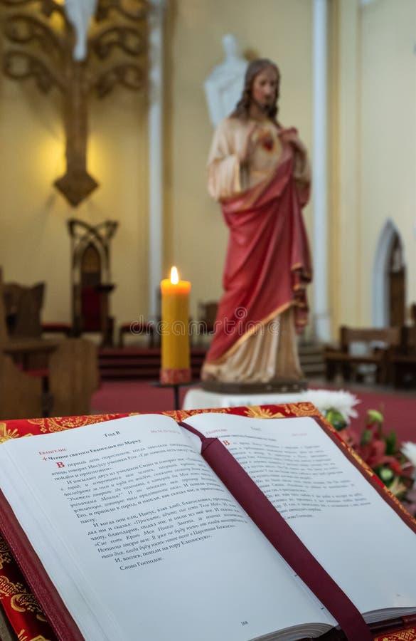 Wewnętrzna Rzymskokatolicka katedra Niepokalany poczęcie o zdjęcia royalty free