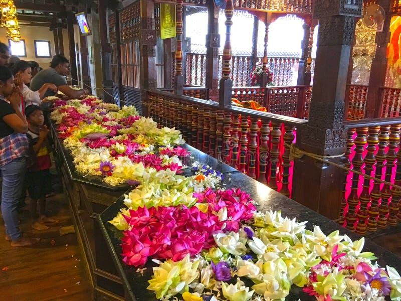 Wewnętrzna widok świątynia ząb Buddha z kwiatami obraz royalty free