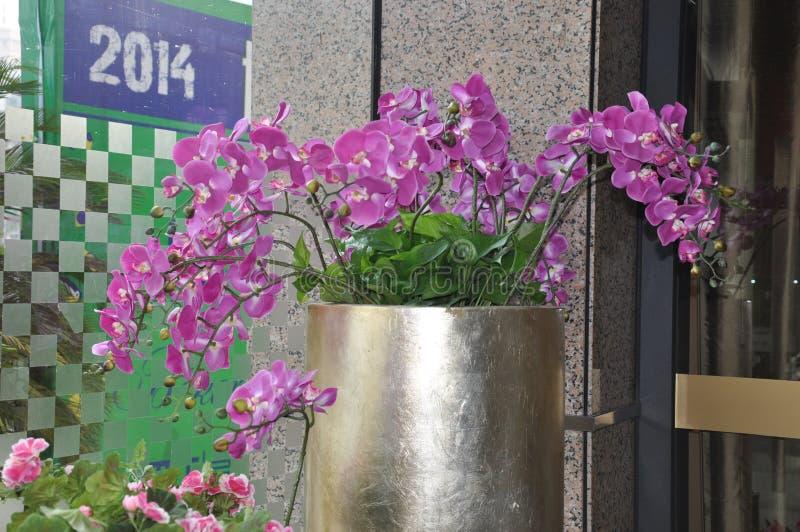 Wewnętrznej dekoraci fotografia, obraz, życie, etc, wciąż, piękne kwiaty obrazy royalty free