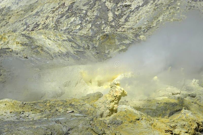 Whakaari或白岛在新西兰用硫处理领域 免版税库存照片