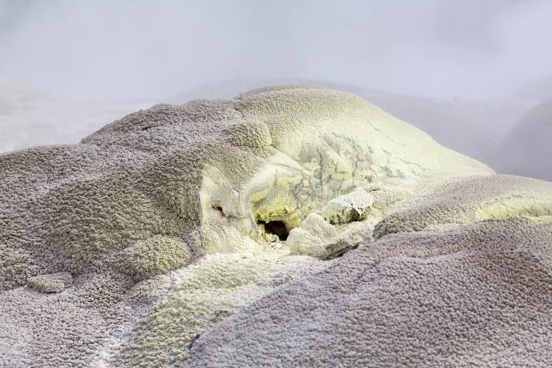 Whakarewarewa termiskt geyserområde royaltyfria foton