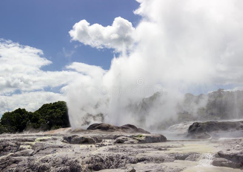 Whakarewarewa termiskt geyserområde arkivbild