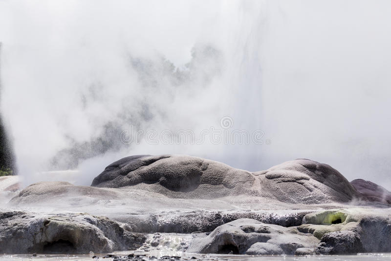 Whakarewarewa termiskt geyserområde royaltyfria bilder