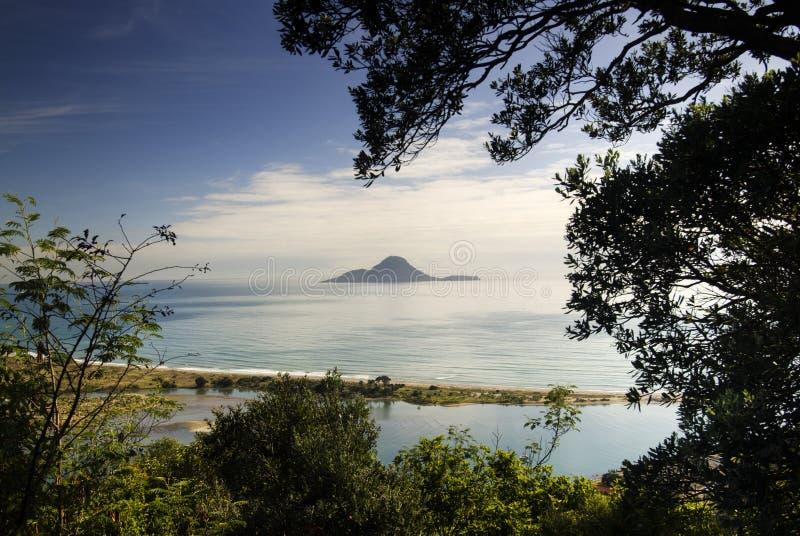 Whakatane,新西兰 图库摄影