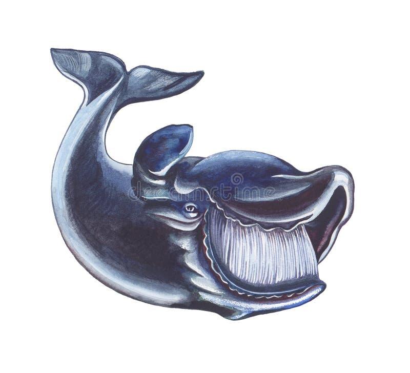 Download Whale stock illustration. Illustration of cartoon, clip - 16682419