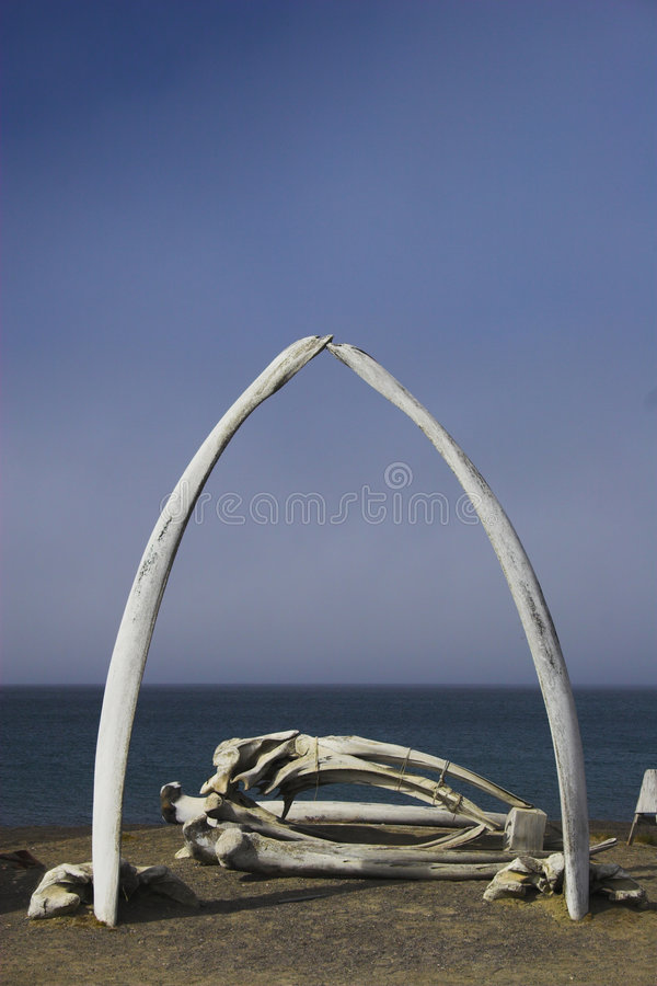 Whale bones. Various views and structures of whale bones in native whaling village on Arctic Ocean shore stock photo