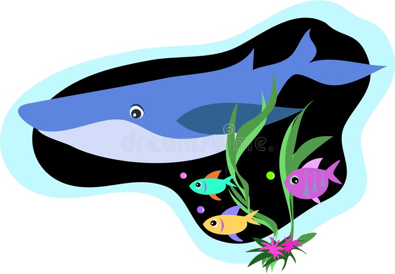 Whale And Fish Swim Royalty Free Stock Photos