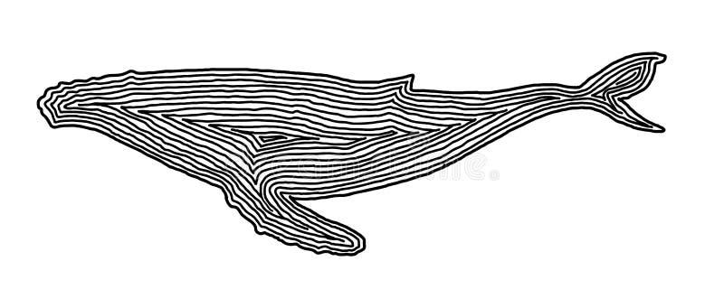 A whale illustration icon in black offset line. Fingerprint style for logo or background. stock illustration