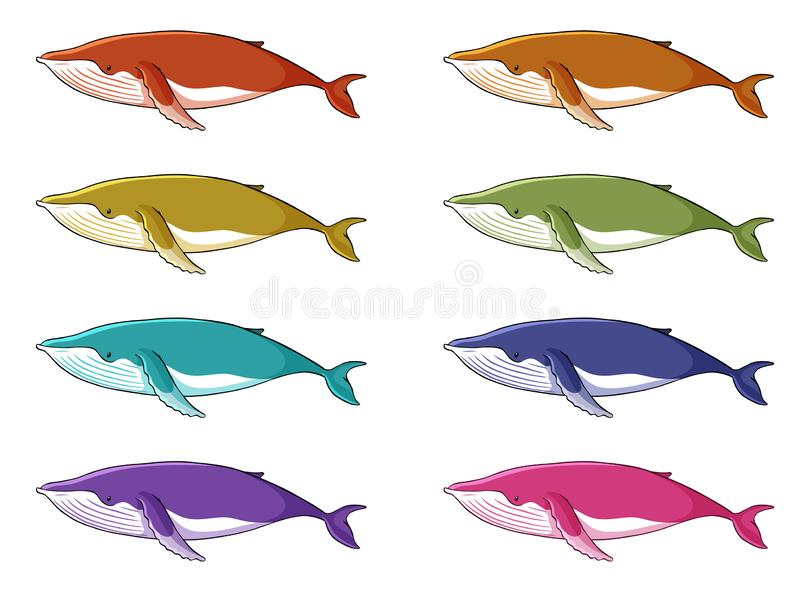Whale in many colors stock illustration