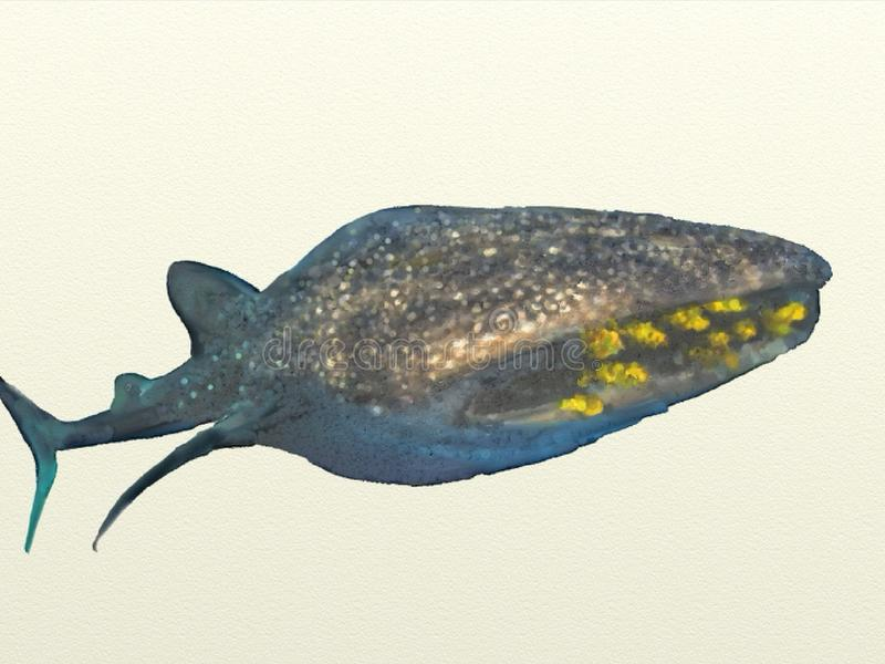 Whale shark watercolor stock image