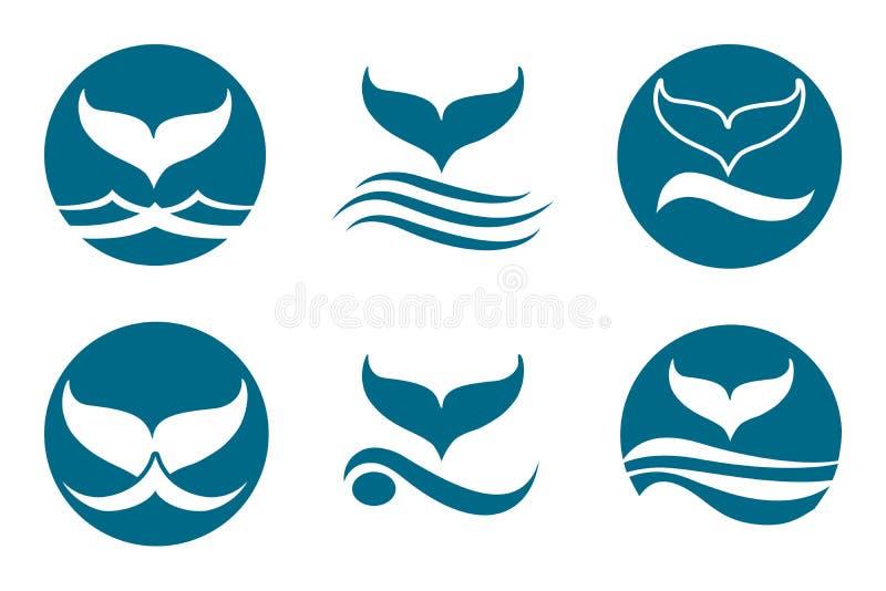 Whale Tail Logo. Whale tail monochrome logo set. Isolated on white background stock illustration