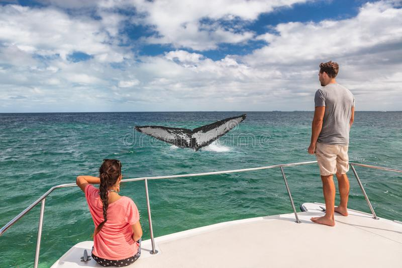 Whale watching boat tour tourists people on ship looking at humpback tail breaching ocean in tropical destination, summer travel. Vacation. Couple on deck of stock photography