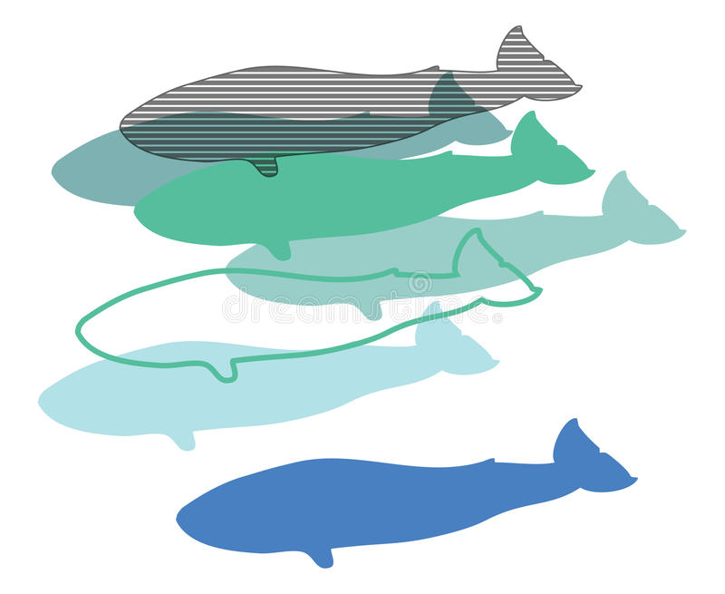 Whales, illustration digital, stock photography