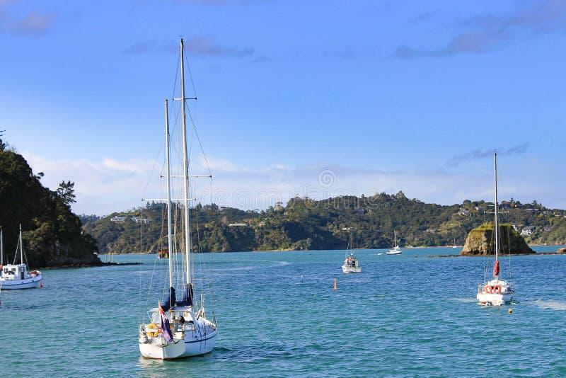 Whangarai,新西兰 库存图片