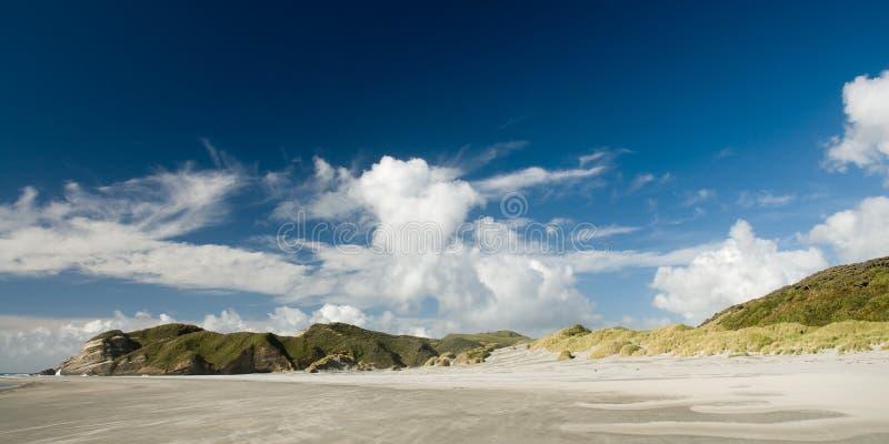 Download Wharariki пляжа стоковое изображение. изображение насчитывающей ново - 6866809