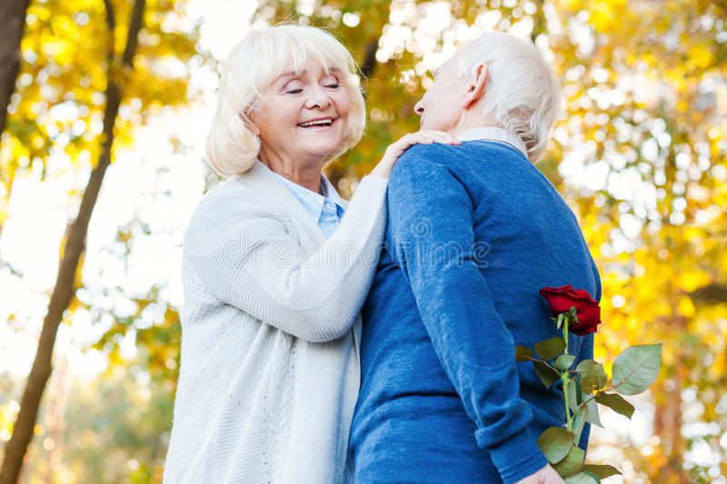 What do you got there?. Low angle view of happy senior couple bonding to each other while men hiding red rose behind back royalty free stock photo
