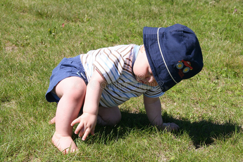 What is this Green Stuff. Little Boy picking at the grass stock image
