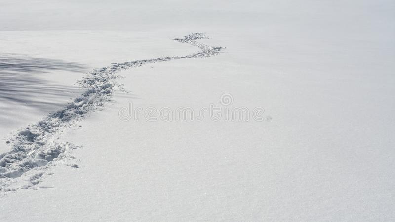 What happened to the person. ? Footprints in the snow ending abruptly illustrating the concepts of getting nowhere, mystery and disappearence royalty free stock photography