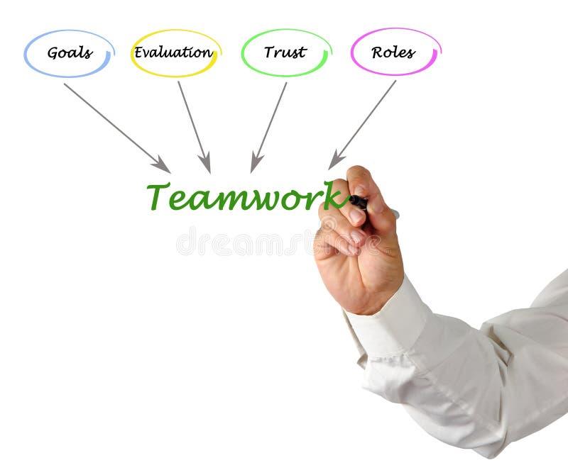Good teamwork stock image