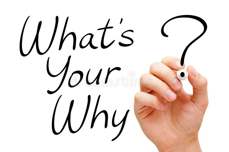 What Is Your Why Existential Question royalty free stock images