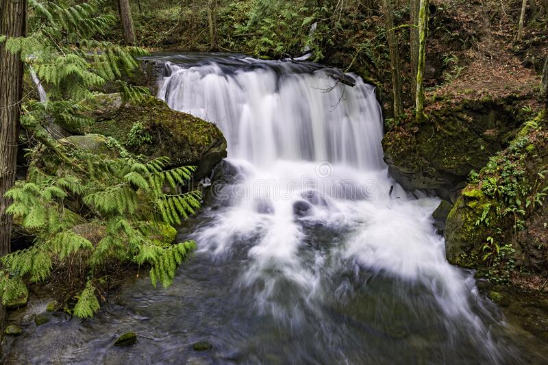 Whatcom cae en Whatcom y cae en el Parque Bellingham Washington EE.UU. imagen de archivo libre de regalías